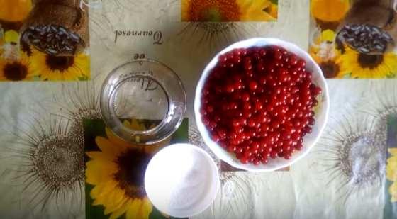 Калина — 11 рецептов приготовления на зиму